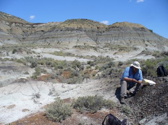 cendre-volcanique-disparition-dinosaures-paulrenne.jpg