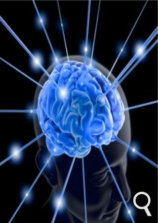 cerveau-mortimminente.png