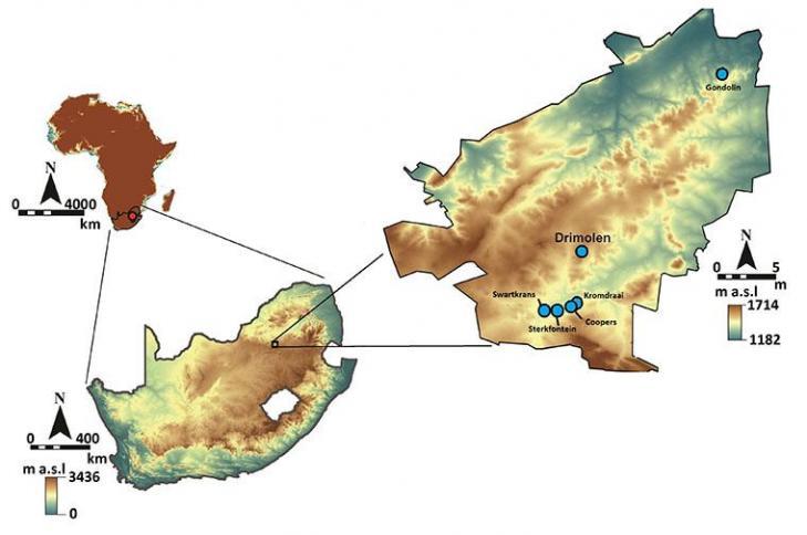 Drimolen map