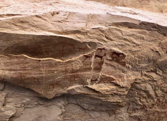 Egypte petroglyphe12000ans4