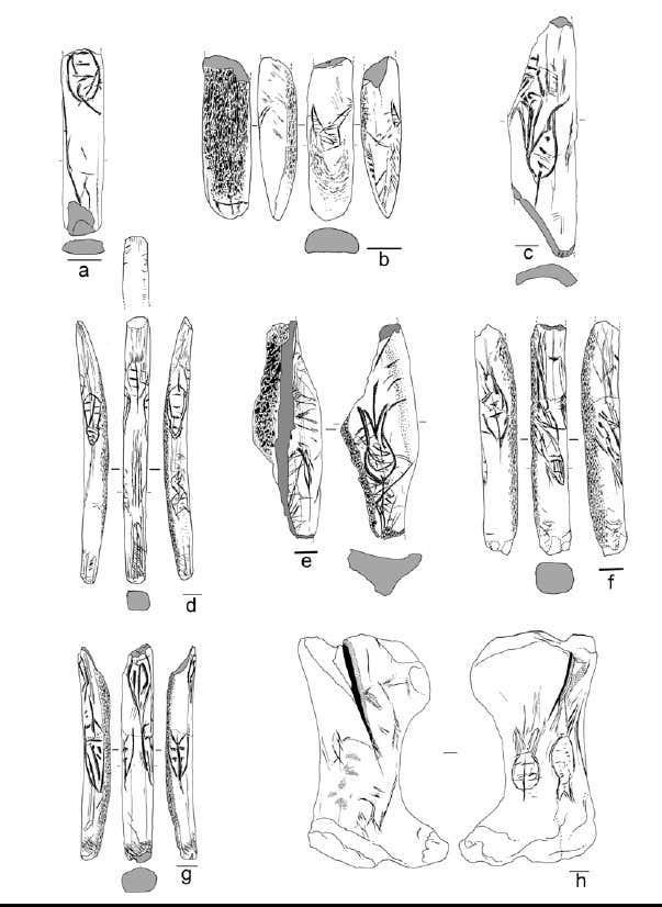 Figure 18 motifs en forme de feuille et de rave de rochereil musee national deprehistoire
