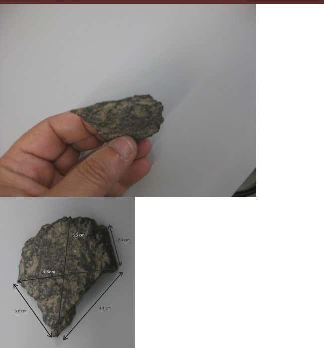 Figure5 terceira