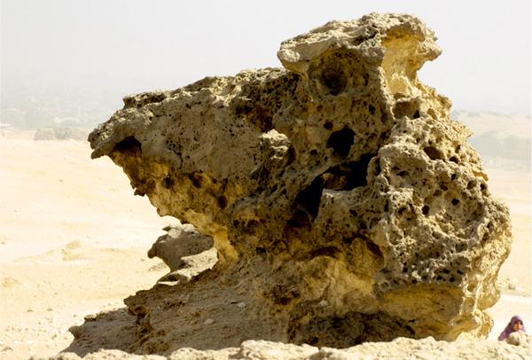 fossile-creature-4.jpg