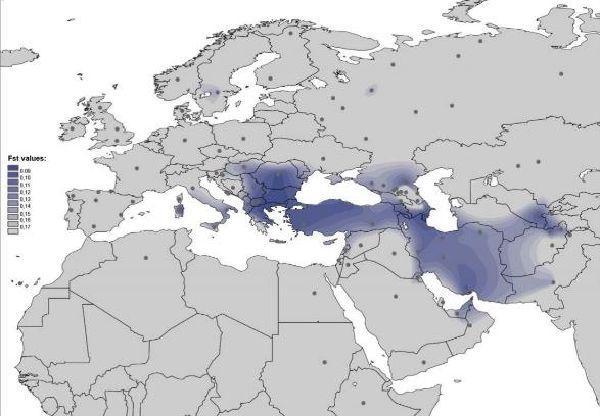 Genomeneolithiquecarpato danubien