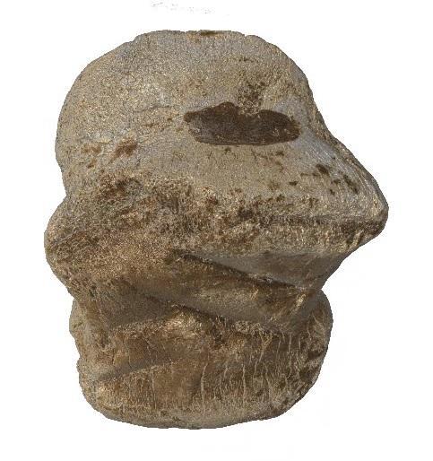 Gravures neandertal10