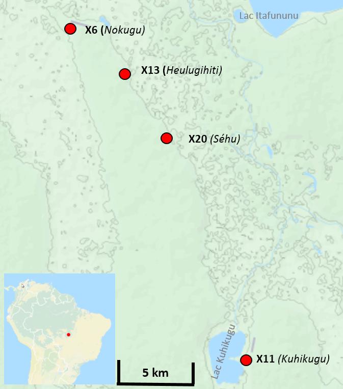 Kuhikugu complexe archeologique