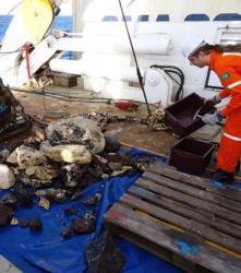 l-atlantide-bresilienne-retrouvee.jpg