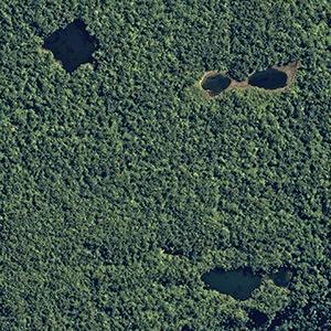 Lagunes paititi eventuelle