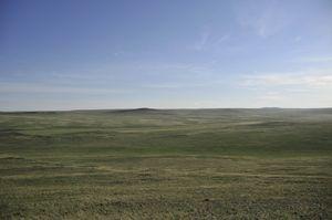 mongolie-steppe.jpg