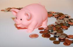 monnaie-dollars-euros-argent-cochon.jpg