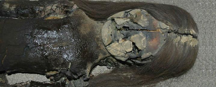 Mummy chincherro1