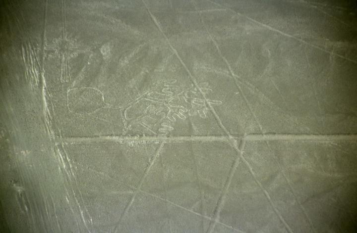Nazca lesmains