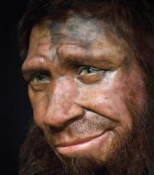 Neandertalien spy 2