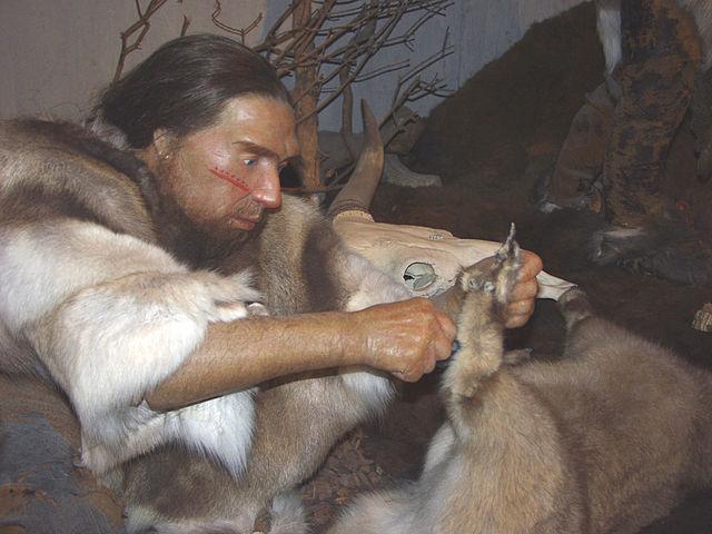 Neanderthal in museum