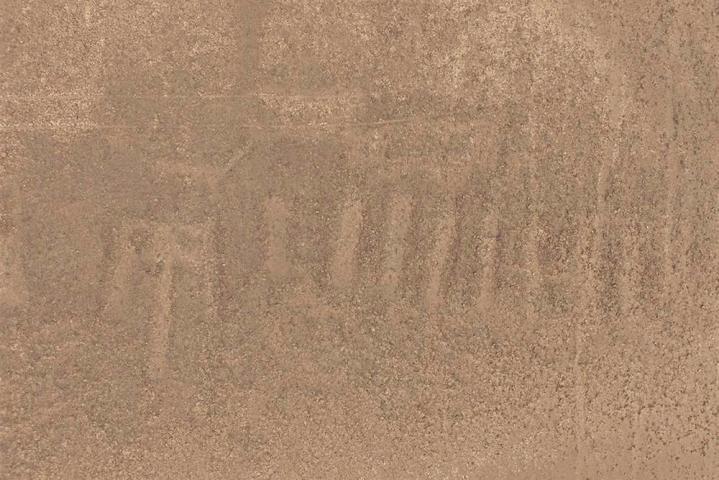 Newgeoglyphe nasca