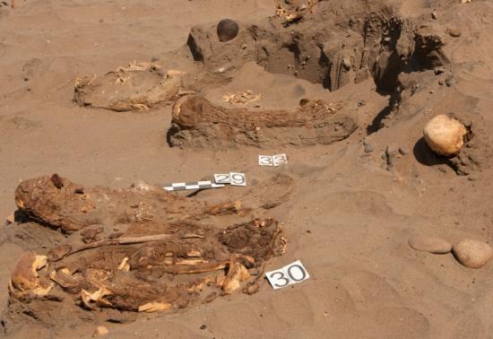 Peruvian mummies 2014 1