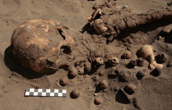 Peruvian mummies 2014 2