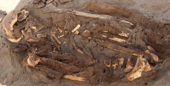 Peruvian mummies 2014 6