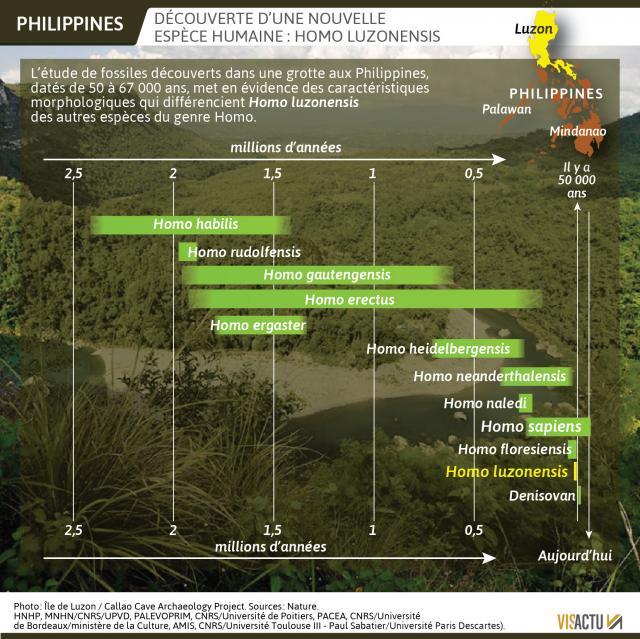 Philippines grotte callao3