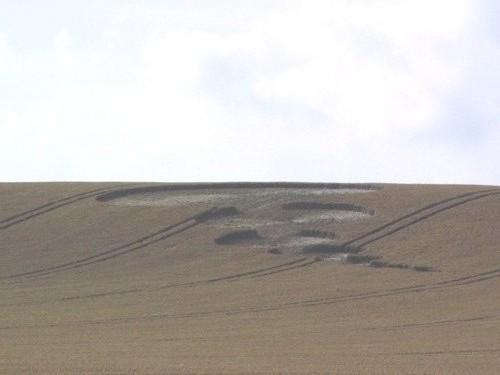 photo-ufo-crop-circles-ovni-morganhill.jpg