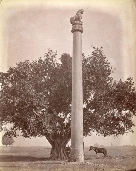 pilier-dashoka-de-lauriya-nandangarh.jpg
