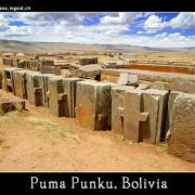 Pumapunkunew