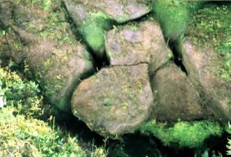 Pyramidqixing2