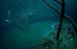 riviere-sousmarine-cenote-angelina-yucatan0.jpg