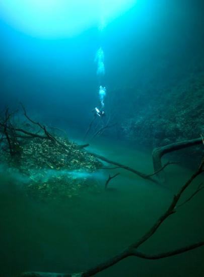 riviere-sousmarine-cenote-angelina-yucatan5.jpg