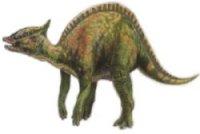 Saurolophussm