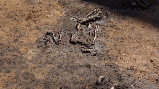 Slatina neolithic settlement sofia bulgaria 8000 year old graves prehistory 4