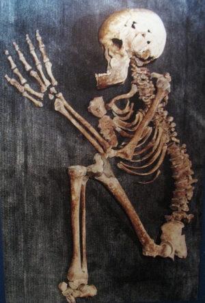 Squelette d epoque neolithique mis au jour en israel