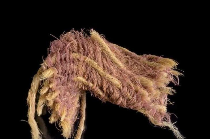 Tissusteintes violetroyal1
