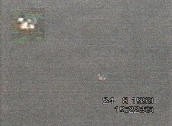 Ufos beinwil hirzel richterswil suisse 24 08 1999 fig10a