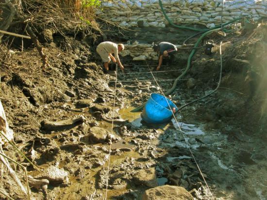 Uruguay fouilles