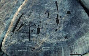 Venezuela petroglyphestridactyles mini
