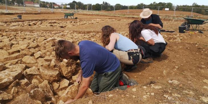 Vix fouilles